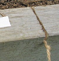 Notch in raised bed secures the twine